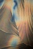 Curvas de Crystallic Imagens de Stock