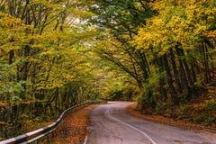 Curvas de la carretera con curvas a través de árboles del otoño Foto de archivo libre de regalías