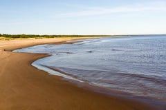 Curvas de la costa costa por mañana del verano fotografía de archivo libre de regalías