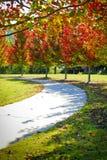 Curvas do caminho do parque da cidade com a paisagem do outono Fotografia de Stock