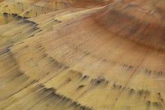 Curvas na areia Imagens de Stock
