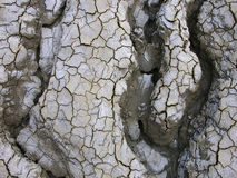Curvas no deserto imagens de stock royalty free