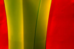 Curvas verdes Fotografia de Stock Royalty Free