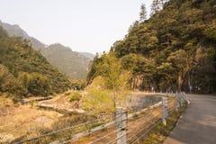 Curvas y arroyo del camino Foto de archivo libre de regalías