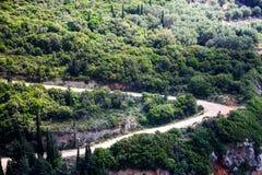 Curvatura de Off Road no ambiente florestado Vista superior da floresta do campo que cresce plantas e árvores diferentes Bonito foto de stock royalty free
