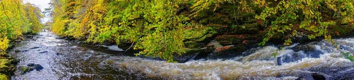Curvatura del fiume Immagini Stock
