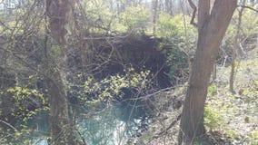 Curvatura del fiume Fotografie Stock