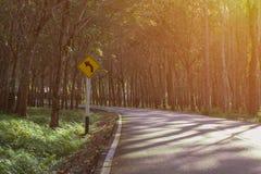 Curvatura della piantagione di gomma della pianta della giungla nella strada con il segno T Fotografia Stock Libera da Diritti