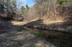 Curvatura di Battle Creek attraverso la foresta Fotografie Stock Libere da Diritti