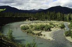 Curvatura selvaggia del fiume Immagine Stock Libera da Diritti