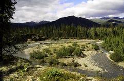 Curvatura selvaggia del fiume Fotografia Stock Libera da Diritti