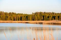 curvaturas no por do sol pelo lago foto de stock