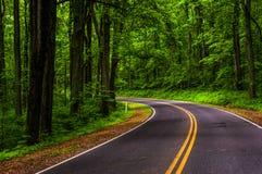 Curve along Skyline Drive in Shenandoah National Park Stock Images