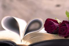Curve of bible book on heart shape and rose for background. And inspiration concept royalty free stock photos
