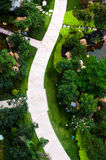 Curve brick path in garden. Top view of curve brick path in garden, and surrounded by green plants Royalty Free Stock Photo
