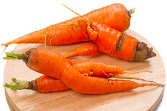 Curve carrots Stock Image