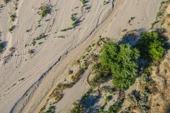 Curve in Desert Sand. Curve in the sand of the Mojave Desert of southern California Royalty Free Stock Photo