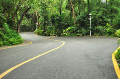 Curve driving road. In tropical forest Royalty Free Stock Images