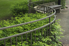 Curve fence and green trees in the park Royalty Free Stock Photo