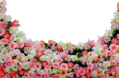 Curve flower background Stock Image