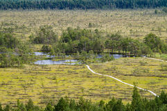 Curve hiking trails of Tolkuse bog, Estonia Stock Image