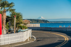 Curve And Mount Rainier royalty free stock images