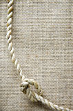 Curve of natural rope Royalty Free Stock Photo