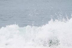 Curve of ocean wave with splash of water. On blurred background royalty free stock photo