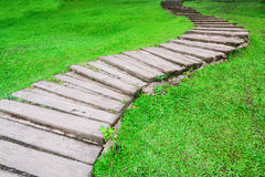 Curve pathway through green lawn Stock Photography