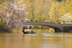 Curve a ponte Foto de Stock Royalty Free