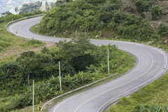 Curve road. On the mountain Stock Photography