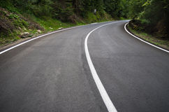 Curve road. Asphalt curve road in green forest Royalty Free Stock Image