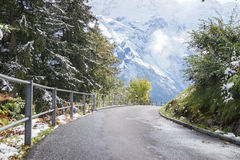 Curve road covered with frosted snow and green meadow mountain i Stock Photos