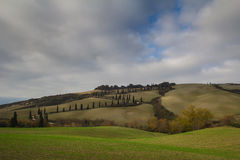 Curve road with cypress trees in Tuscany Stock Photos