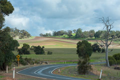 Curve Road. In the green field out of the town Royalty Free Stock Photography