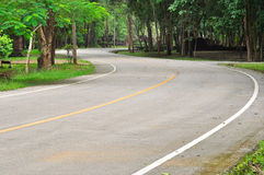 Curve road in a green peaceful park Stock Photography