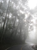 Curve road in the mist Royalty Free Stock Images