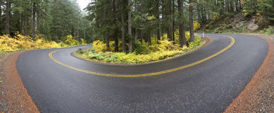 Curve in the Road Panoramic. A curve in the road on the McKenzie Highway in Oregon on a foggy Autumn morning royalty free stock photography