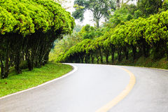 Curve road view in garden's royal Stock Images