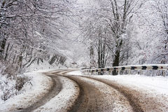 Curve road through winter forest Royalty Free Stock Photos