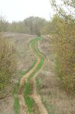 Curve rustic track Royalty Free Stock Photos
