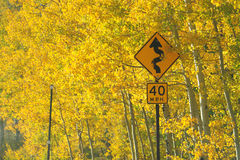 Curve sign with fall colors Stock Photography