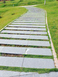 Curve stone path in garden Stock Images