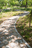 Curve Stone Walkway in spring Stock Photos