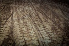 Curve tire track. Brown surface stock image