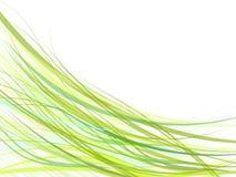 Curve verdi Fotografie Stock