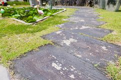 The curve walkway on the grass in the garden Royalty Free Stock Image
