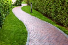 Curve wavy path for walking in the backyard. Curve wavy path for walking in the backyard with a hedge of deciduous bushes and evergreen thuja stock images