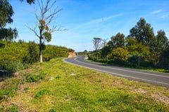 Curve way of asphalt road Stock Photo
