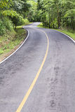Curve way of asphalt road through the tropical forest Royalty Free Stock Photos